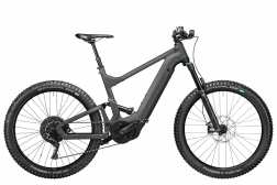 Riese & Müller Delite mountain touring 625 Wh
